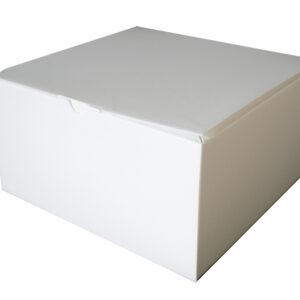 Secopack srl Termotorta packaging termico gelato